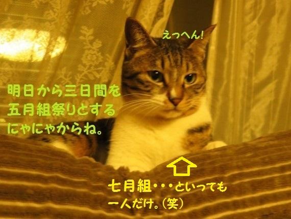 20160520-0001.jpg