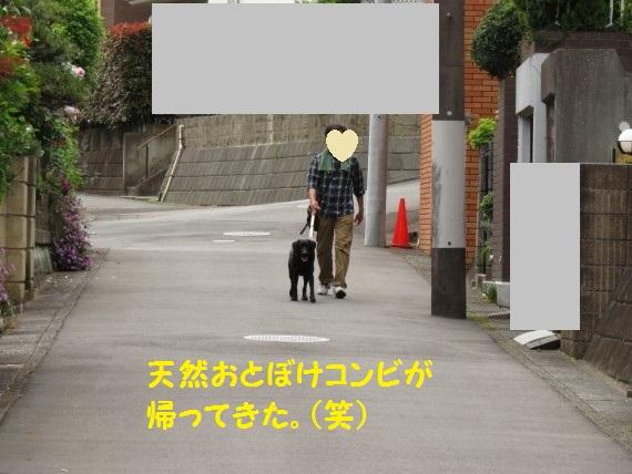 20160607-01.jpg