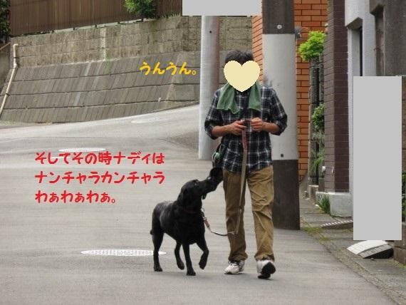 20160607-02.jpg