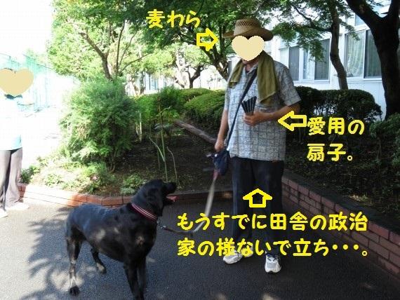 20160711-0001.jpg