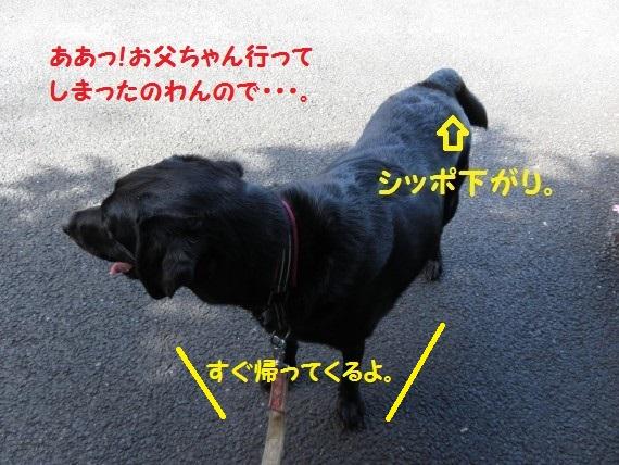 20160711-0002.jpg
