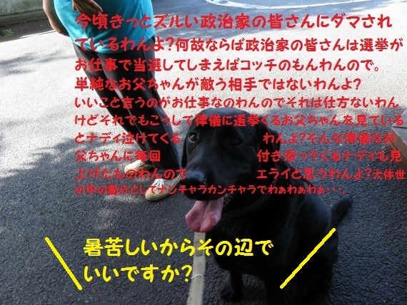 20160711-0004.jpg