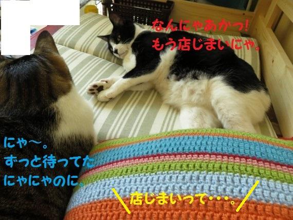 20160902-006.jpg