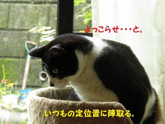 20160922-01.jpg