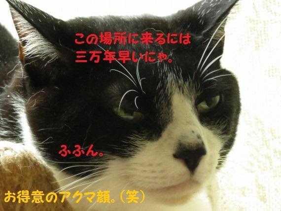 20160922-05.jpg