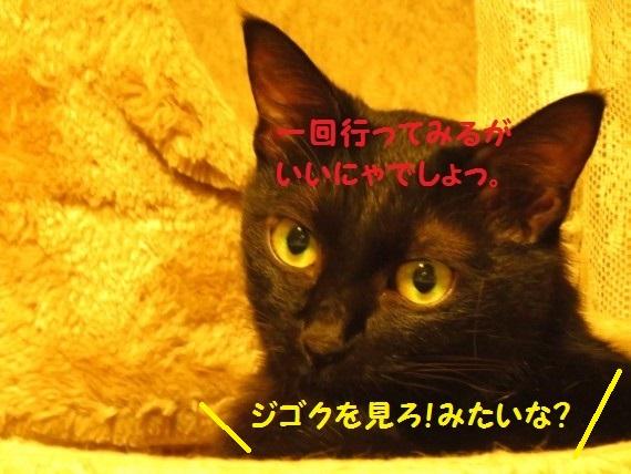 20161015-007.jpg