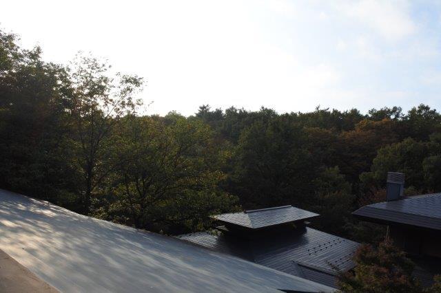 DSC_0141竹泉荘 (1)