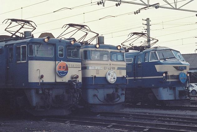 M6605000.jpg
