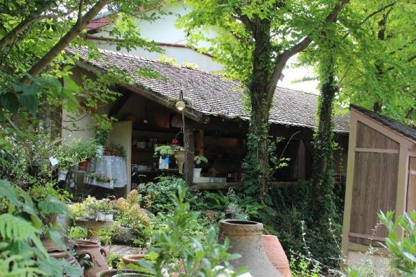 HamamatsuNukumori_003_org.jpg
