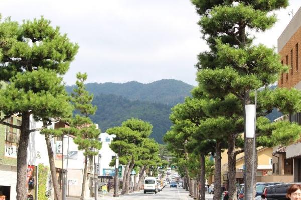 IzumoShinmonDori_003_org.jpg