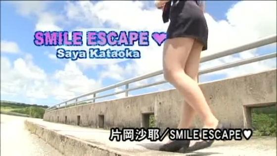 片岡沙耶 SMILE ESCAPEのGカップハミ乳キャプ 画像39枚 2