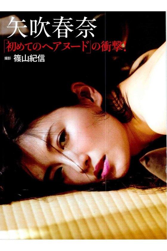 矢吹春奈 映画日本で一番悪い奴らの刺青ヌードグラビア 画像26枚 10