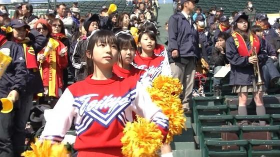 高校球児を応援する女子校生チアガールのおっぱいと腋キャプ 画像30枚 17