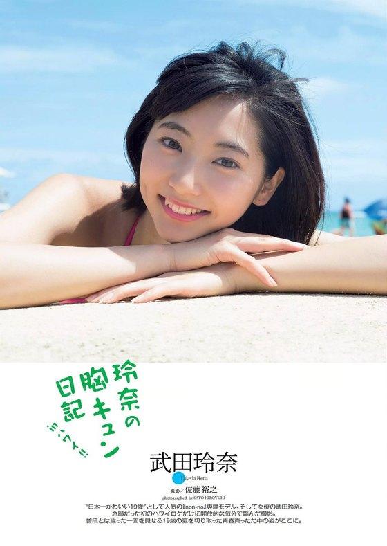 武田玲奈 ヤングジャンプのBカップ水着&チャイナドレス姿 画像25枚 15