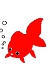 金魚の恋 (2)