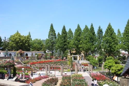 荒牧バラ公園