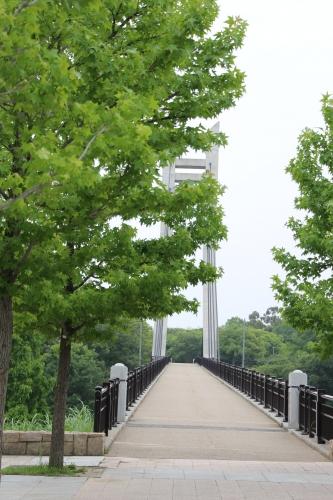 山田池公園