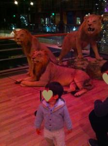 lionetfils.png