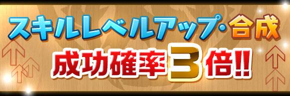 skill_seikou3x_20160609152412c24.jpg