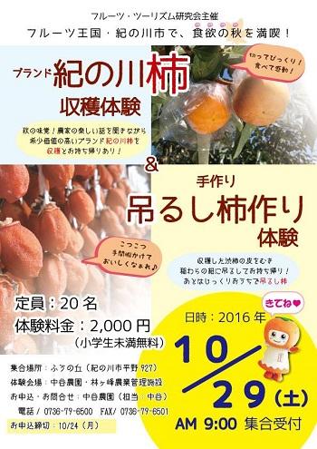 柿収穫2016-10