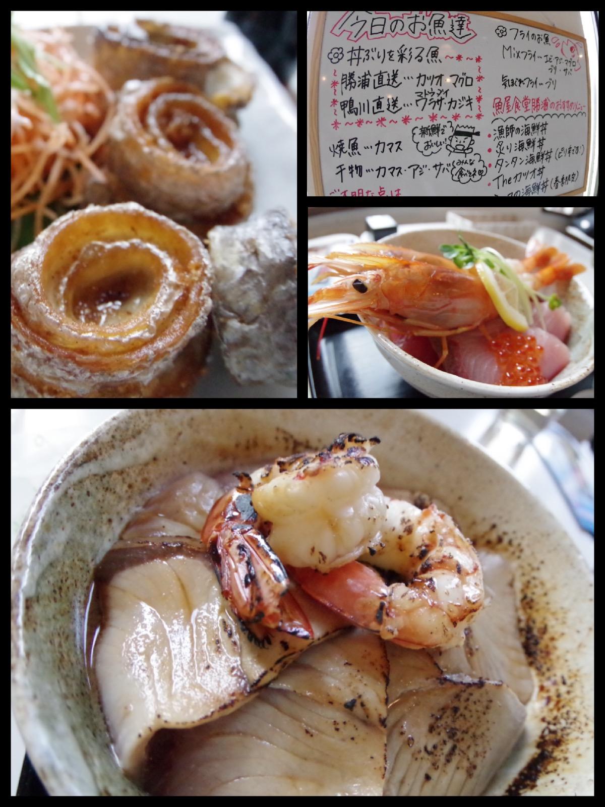 魚屋食堂 勝浦 海鮮丼