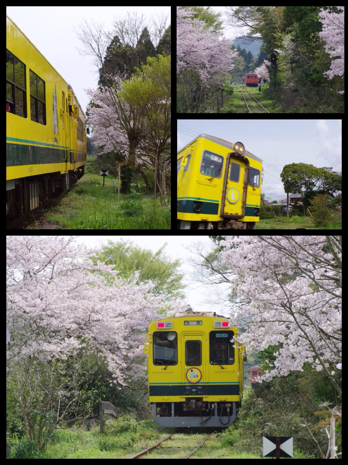 いすみ鉄道 ムーミン列車 国吉から大多喜