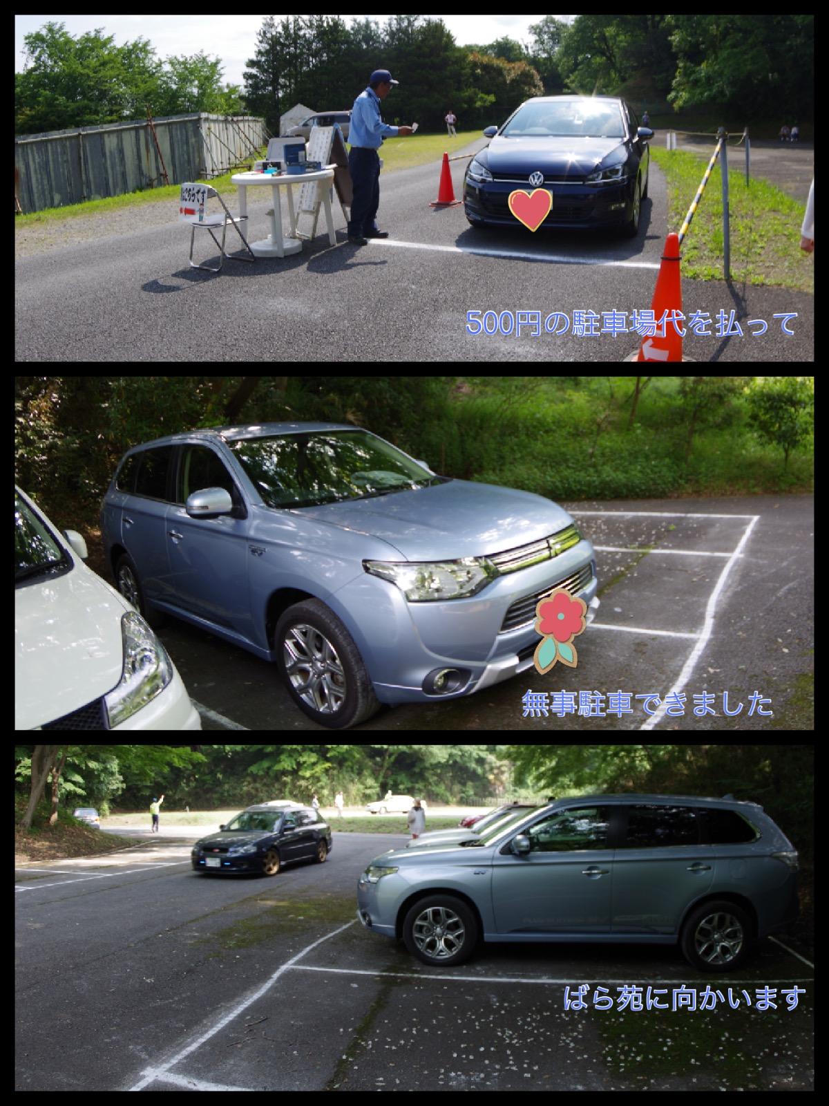 生田緑地 ばら苑 2016