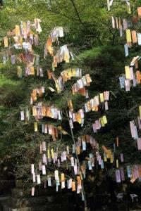 石上(いそのかみ)神宮にて、七夕祭り