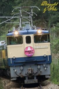 9351レ「トワイライト風HM付」(=EF65-1135牽引)