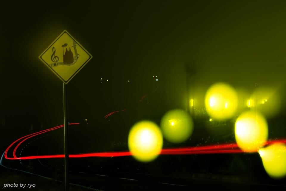 20160731_トトロと防蛾灯と光跡と