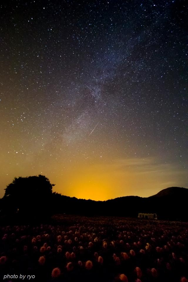 ペルセウス座流星群 2016_1