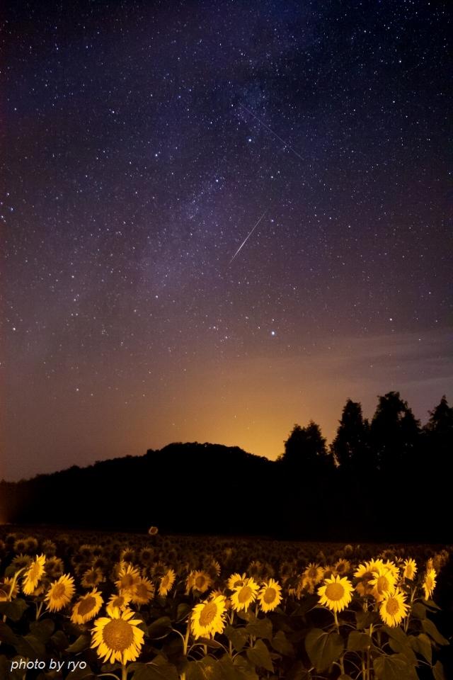ペルセウス座流星群 2016_2