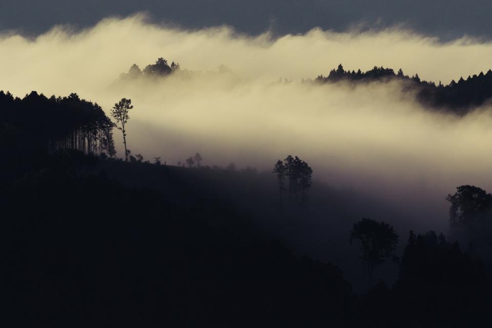 霧那流るる朝に_4
