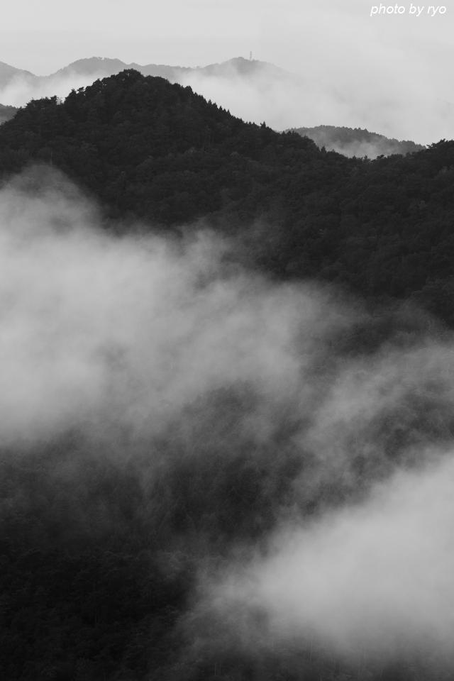 台風一過の朝に_5