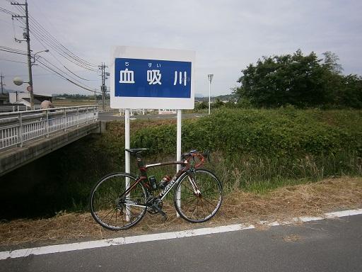 P6040003.jpg