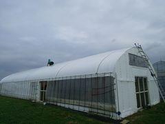 【写真】農園主が受付ハウス天井のビニールを補修している様子