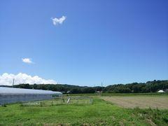 【写真】受付ハウス南側に位置するベアハウスとアラン・フィールド上に広がる青空