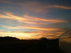 【写真】受付ハウスとアランの小屋の上に広がる久し振りの夕焼け空