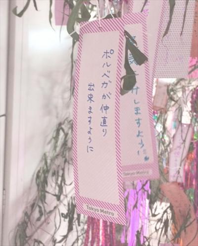 S02_star_wish_R.jpg