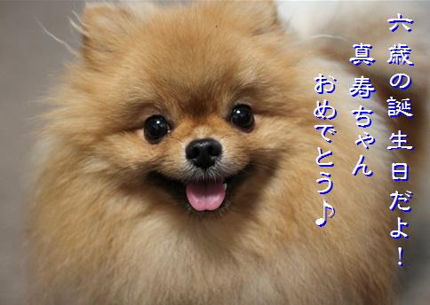blog20160422-7.jpg