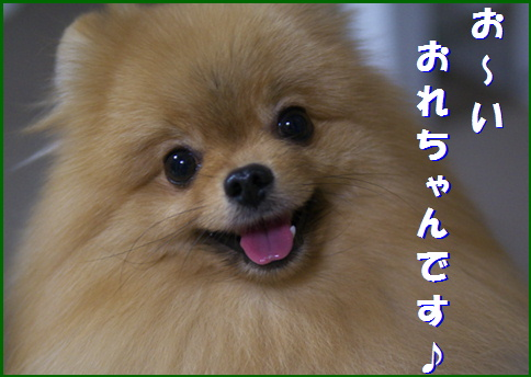 blog20160509-4.jpg