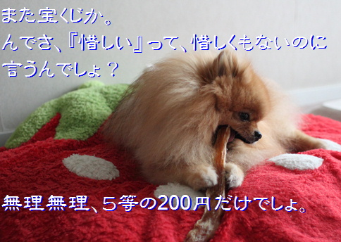blog20160515-0a.jpg