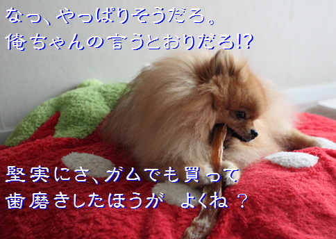 blog20160515-2.jpg