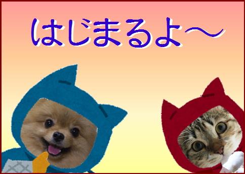 blog20160526-0.jpg