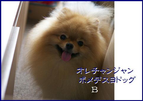 blog20161009-2.jpg
