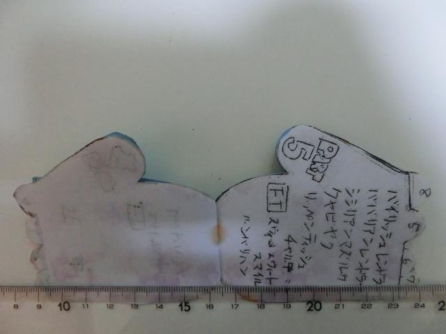 CIMG5092.jpg