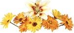 flower4159.jpg