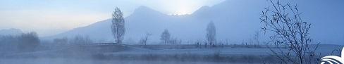top-mist.jpg