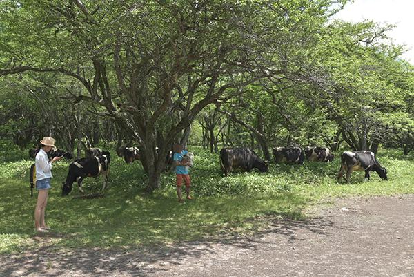 牛と記念撮影