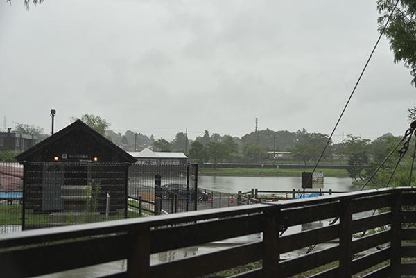 雨のWNV